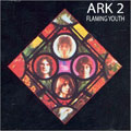 Flaming Youth - Ark 2 (CD)
