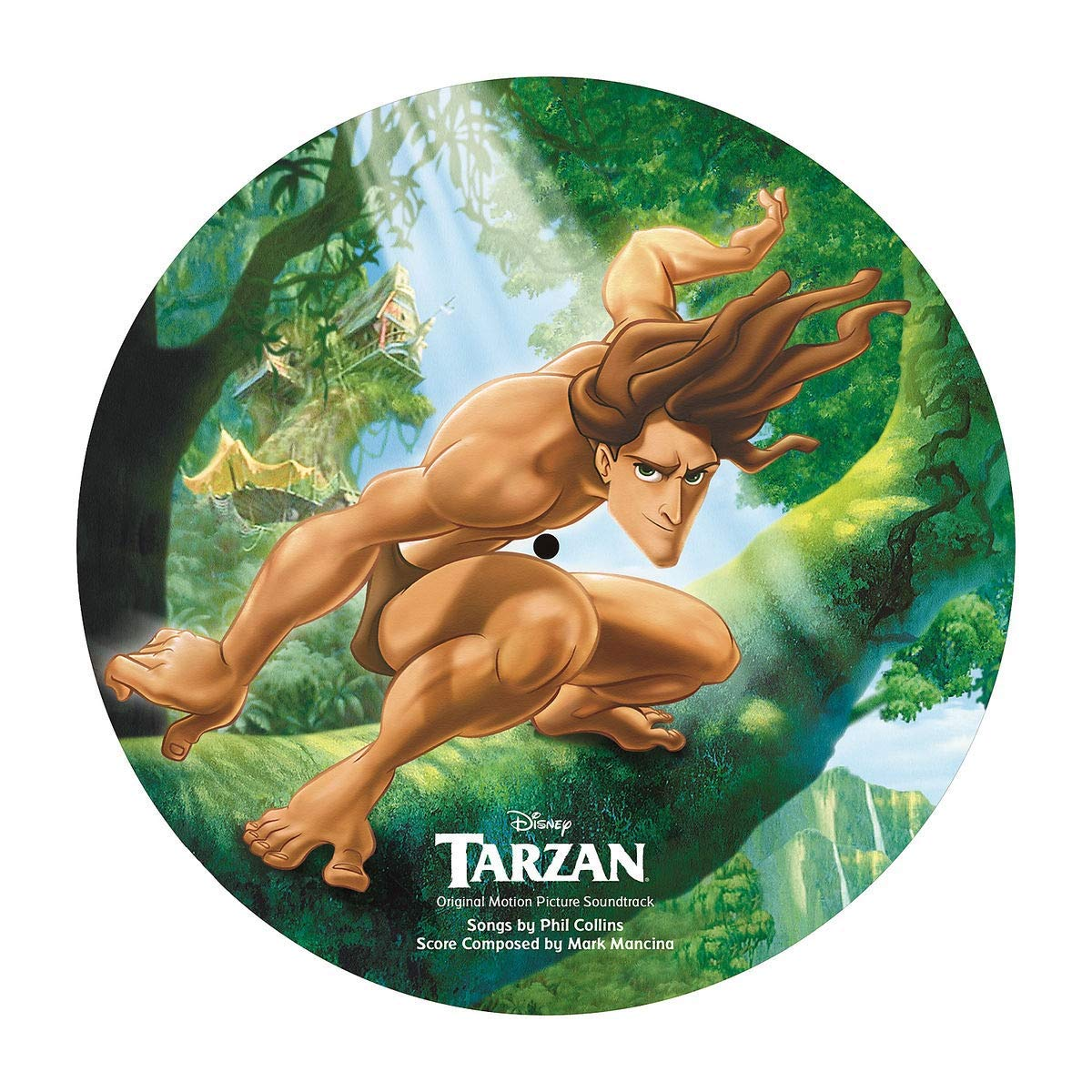 Tarzan Picture LP