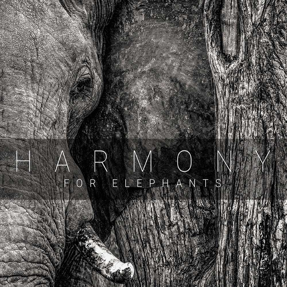 Harmony For Elephants Sampler CD