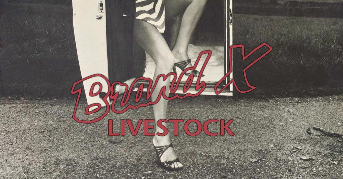 Livestock Brand X
